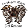 On Angels Wings Pet Rescue
