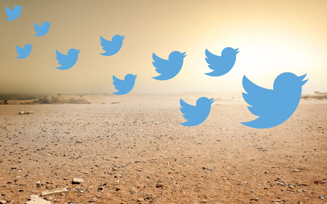Twitter Takes Flight: Don't Let Your Social Media Marketing Get Left in the Dust